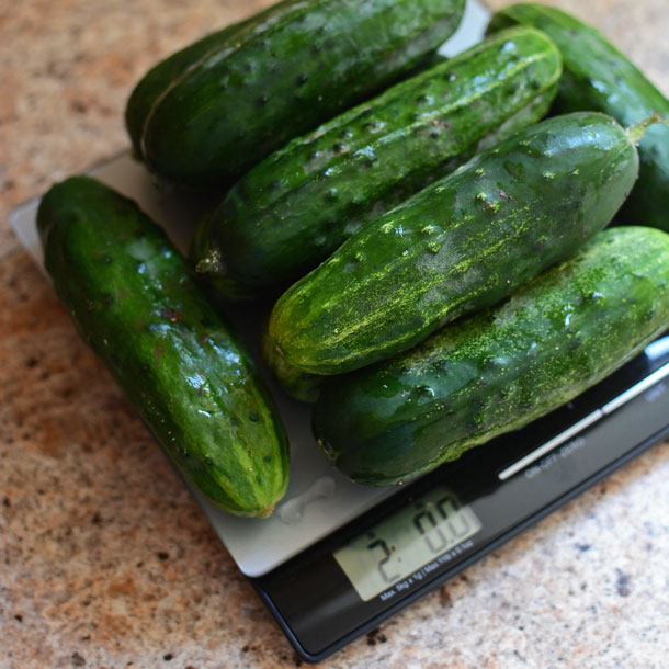 Two Pounds of Pickling Cucumbers