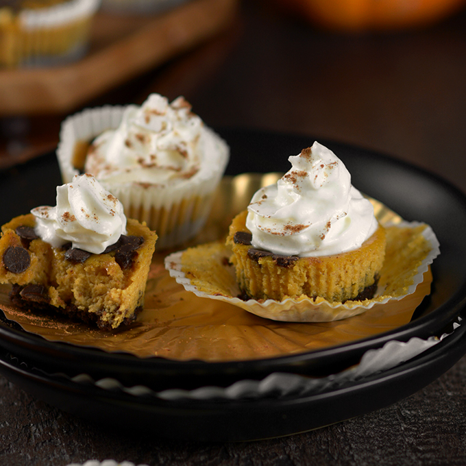Pumpkin Chocolate Chip Cheesecake Bites