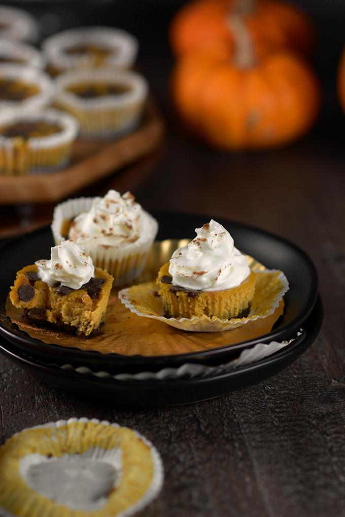 Pumpkin Chocolate Chip Cheesecake Bites